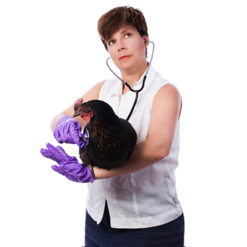 Backyard chickens can get sick and need expensive medical care their owners don't want to pay for.