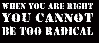 3950908873_when_you_are_right_you_cannot_be_too_radical_design_answer_3_xlarge