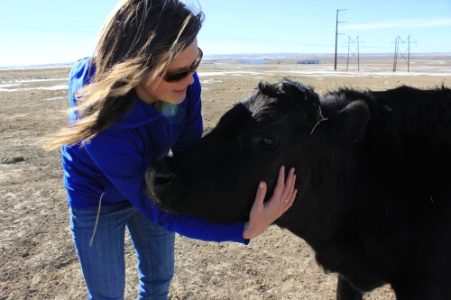 Courtney cuddling a cow.