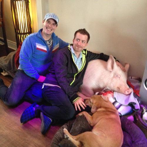 Esther The Wonder Pig's Dads