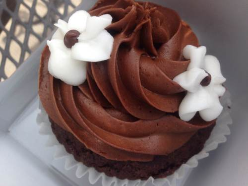 Gluten free chocolate vegan cupcake from Coquette's Bistro and Bakery in Colorado Springs!